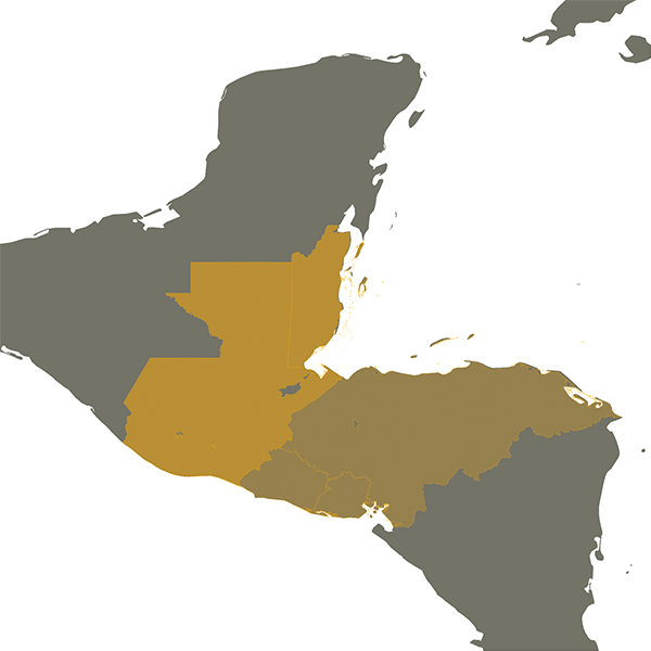 Citizens of Guatemala and Belize in Mexican South Border Region